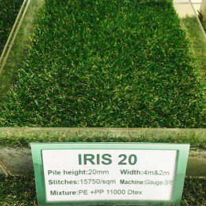 iris 20